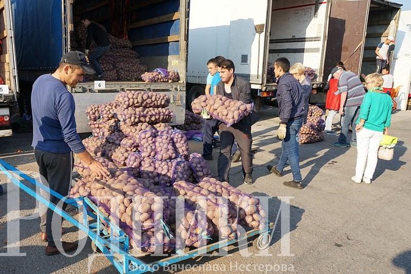 Доставку купленных овощей для одиноко проживающих граждан организуют на ярмарке в Мытищах