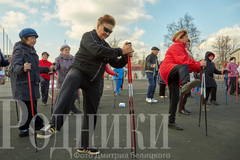 В Мытищах возобновили занятия на свежем воздухе в рамках проекта «Активное долголетие»